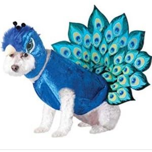Halloween Peacock Dog Costume Animal Planet NWOT